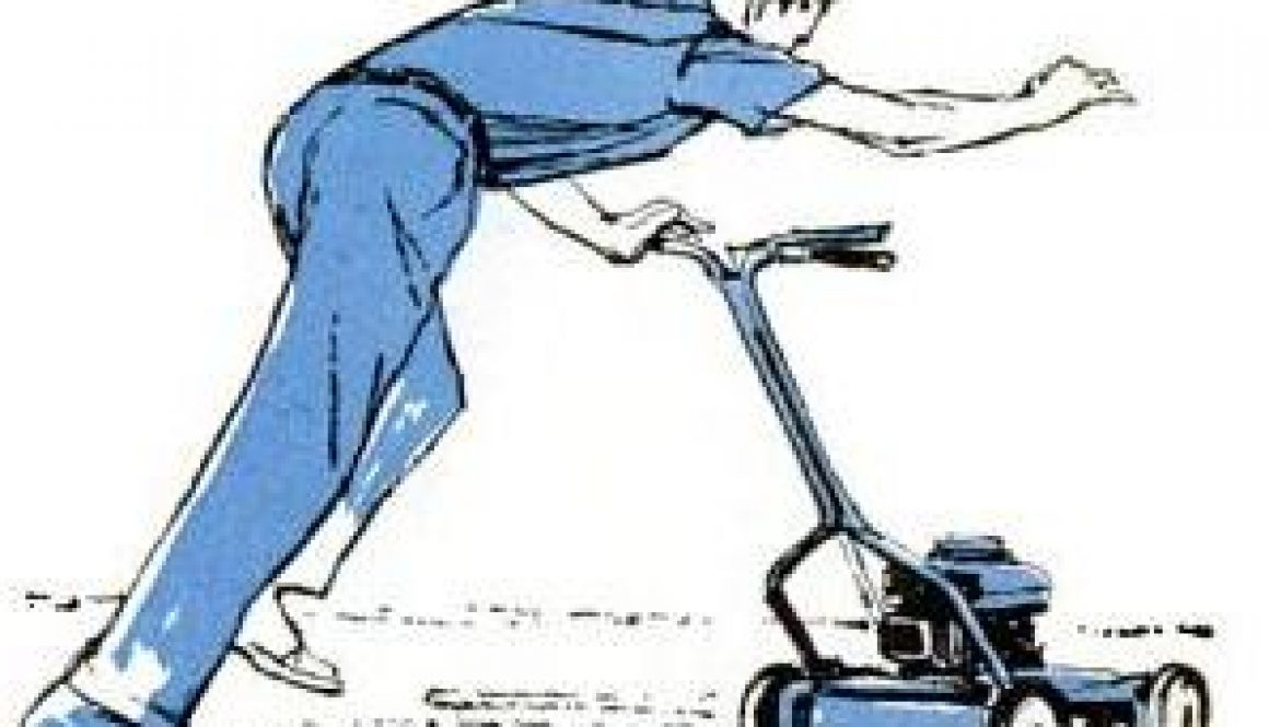 safe power mower